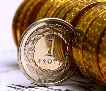 Sprawdzamy firmę Szybka Moneta